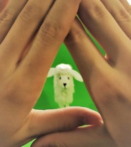 dłonie - masza grander kogel mogel blog